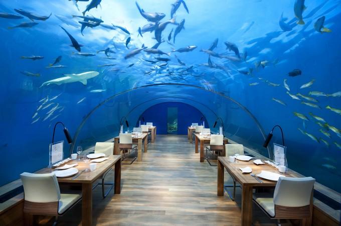 ithaaundersearestaurant_conrad_maldives_rangali_island